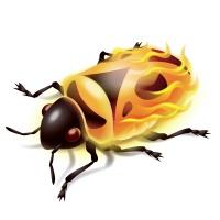 firebug-ikona